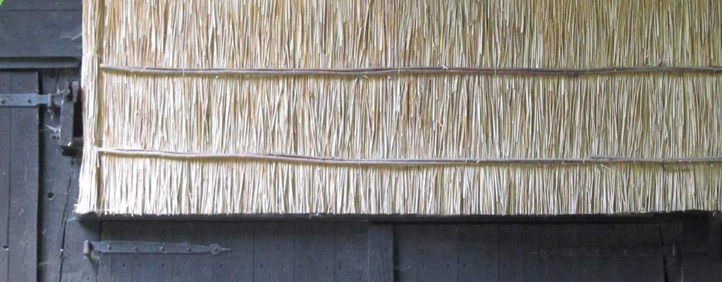 rietdekker in Aalden