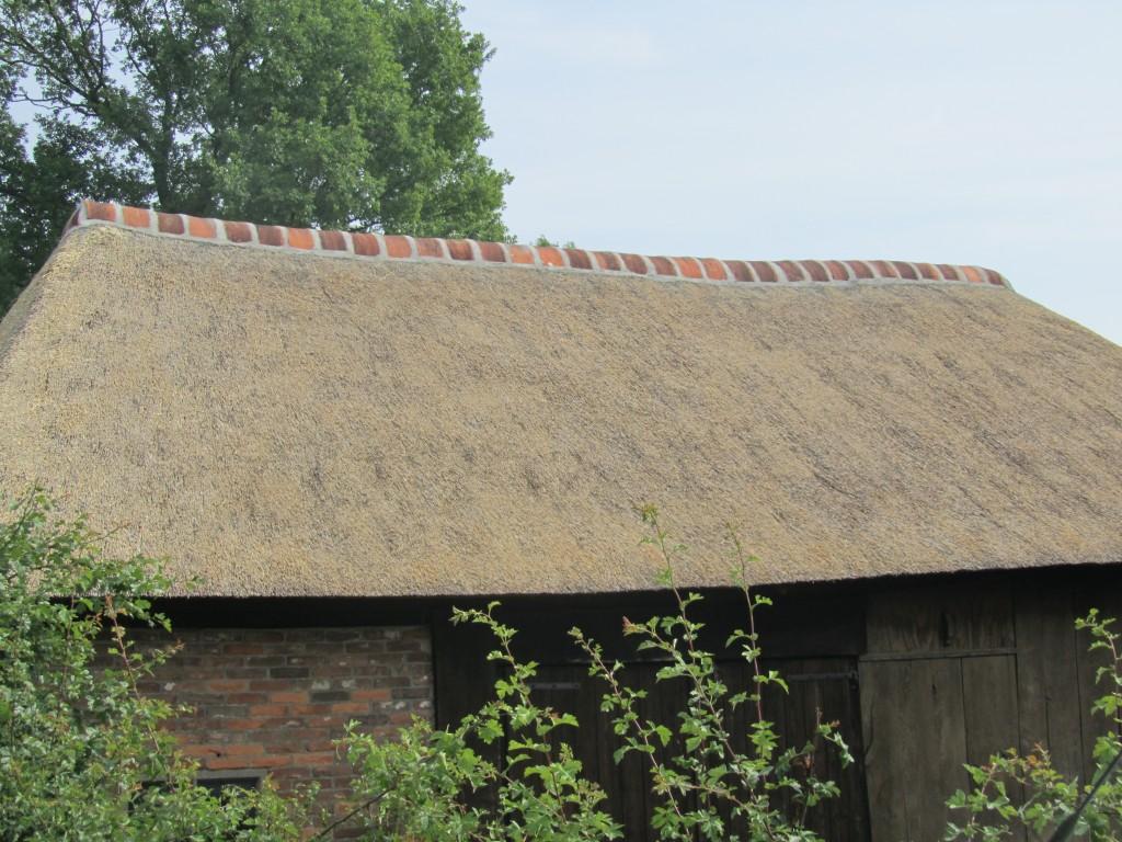Rietdekker in Meppen