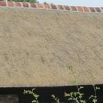 rietdekkersbedrijf in Zweeloo en omgeving